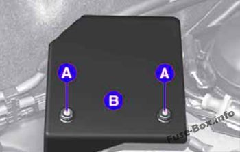 to reach the fuses, loosen the two nuts a and remove the cover b