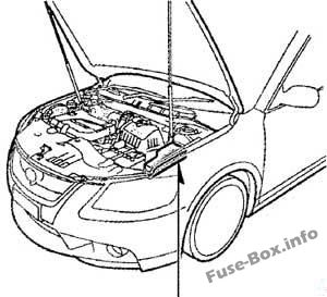 The location of the fuses in the engine compartment: Toyota Aurion (2006-2012)