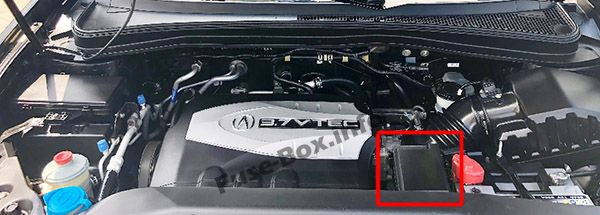 The location of the fuses in the engine compartment: Acura MDX (YD2; 2007, 2008, 2009, 2010, 2011, 2012, 2013)