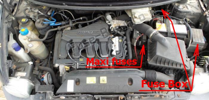 The location of the fuses in the engine compartment: Fiat Multipla (2005, 2006, 2007, 2008, 2009, 2010)