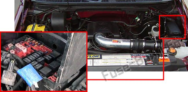 The location of the fuses in the engine compartment: Ford F-150 (1999, 2000, 2001, 2002, 2003)