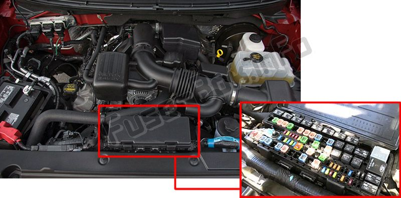 The location of the fuses in the engine compartment: Ford F-150 (2009, 2010, 2011, 2012, 2013, 2014)