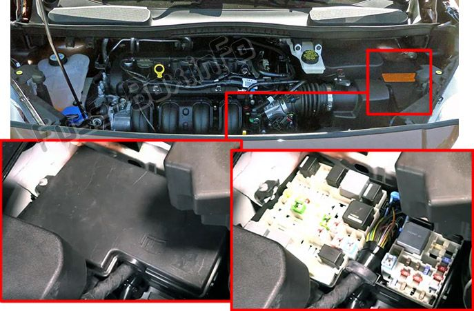 The location of the fuses in the engine compartment: Ford Transit Connect (2014, 2015, 2016, 2017, 2018)