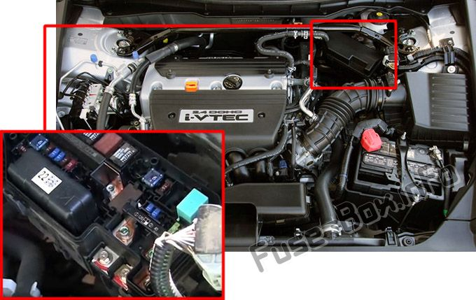 The location of the fuses in the engine compartment: Honda Accord (2008, 2009, 2010, 2011, 2012)
