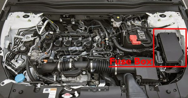 The location of the fuses in the engine compartment: Honda Accord (2018, 2019-)