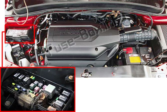 The location of the fuses in the engine compartment: Honda Pilot (2003-2008)