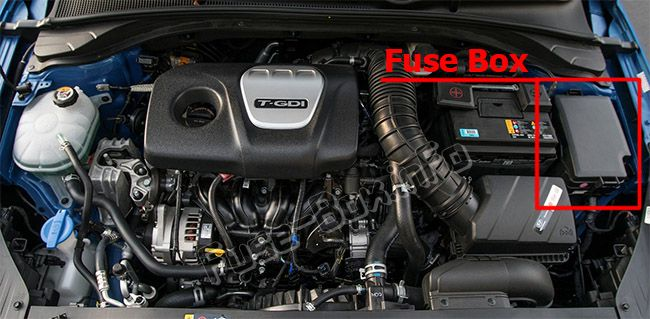Fuse Box Diagram  U0026gt  Hyundai Elantra Gt  Pd  2018  2019