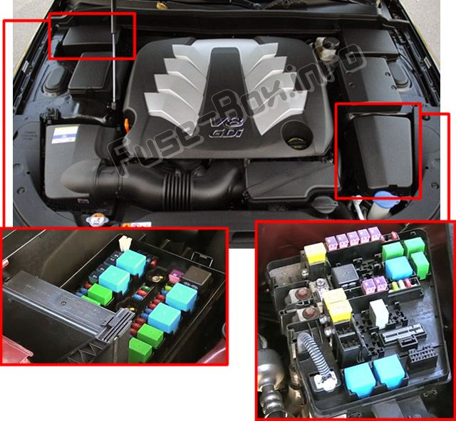 The location of the fuses in the engine compartment: Hyundai Genesis (2010-2013)
