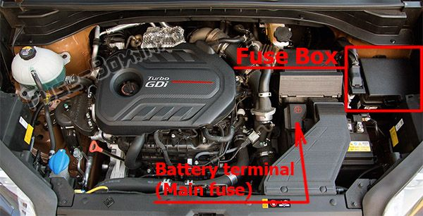 The location of the fuses in the engine compartment: KIA Sportage (2017, 2018, 2019-...)