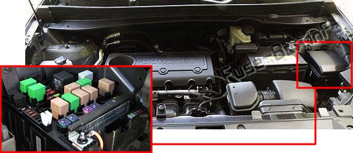 The location of the fuses in the engine compartment: KIA Sportage (2011-2015)
