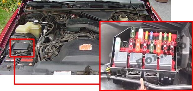 The location of the fuses in the engine compartment: Mercury Grand Marquis (1992-1997)