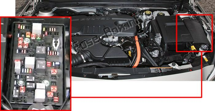 The location of the fuses in the engine compartment: Buick Regal (2011, 2012, 2013, 2014, 2015, 2016, 2017)