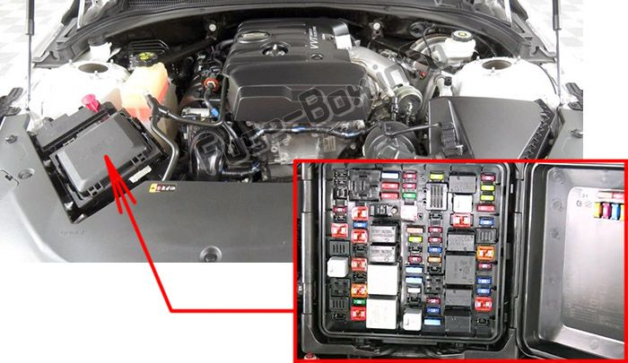 The location of the fuses in the engine compartment: Cadillac ATS