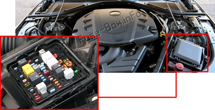 The location of the fuses in the engine compartment: Cadillac CT6