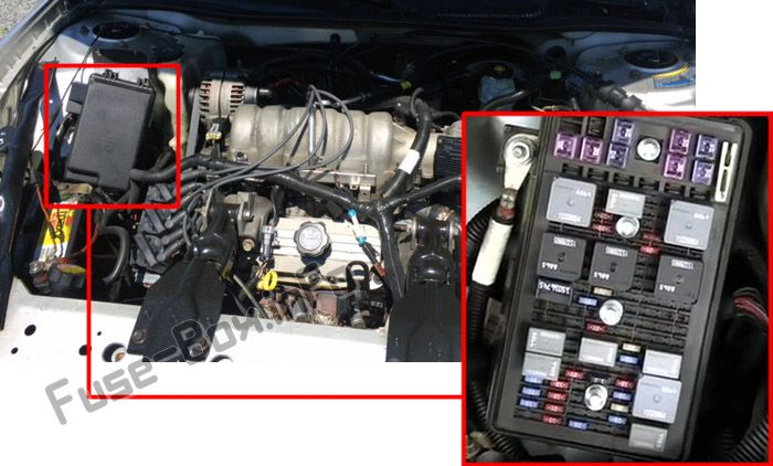 The location of the fuses in the engine compartment: Pontiac Grand Prix (2004-2008)