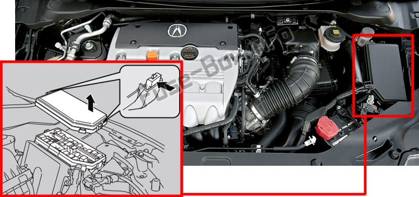 Acura ILX (2013-2018) The location of the fuses in the engine compartment: