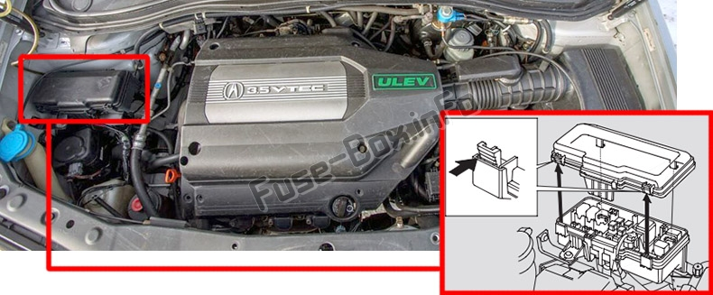 The location of the fuses in the engine compartment: Acura MDX (YD1; 2001-2006)