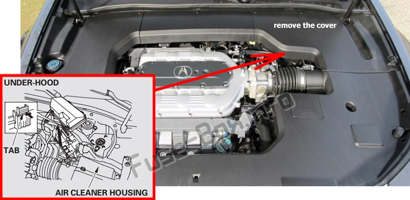 The location of the fuses in the engine compartment: Acura TL (UA8/UA9; 2009-2014)