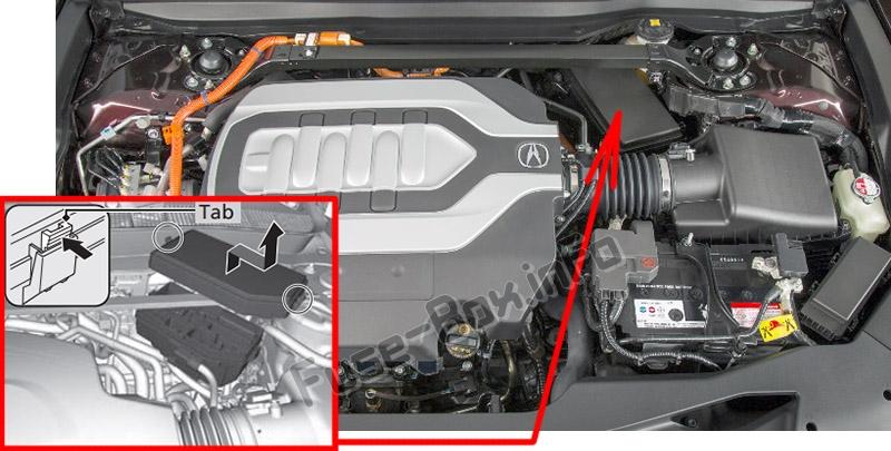 Die Position der Sicherungen im Motorraum: Acura TLX (2014-2019 ...)