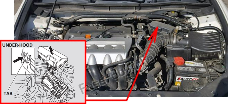 The location of the fuses in the engine compartment: Acura TSX (CU2; 2009-2014)