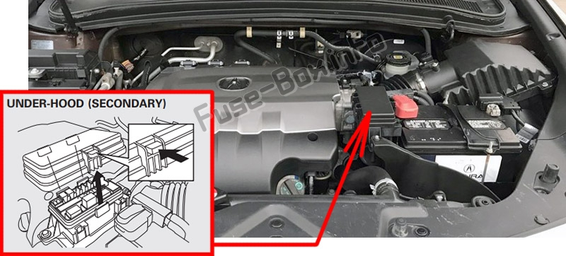 The location of the fuses in the engine compartment: Acura ZDX (2010-2013)