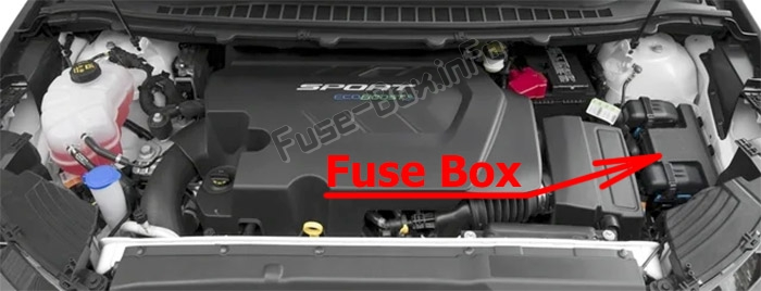 The location of the fuses in the engine compartment: Ford Edge (2015-2019..)