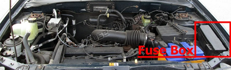 The location of the fuses in the engine compartment: Ford Escape (2005-2007)
