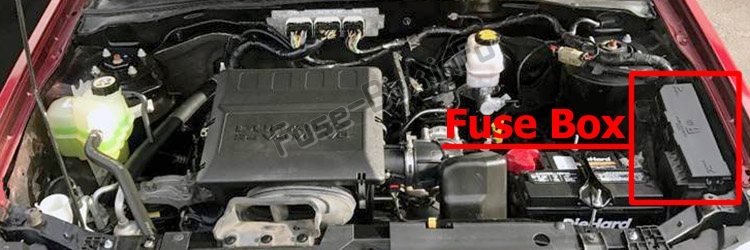 The location of the fuses in the engine compartment: Ford Escape (2008-2012)