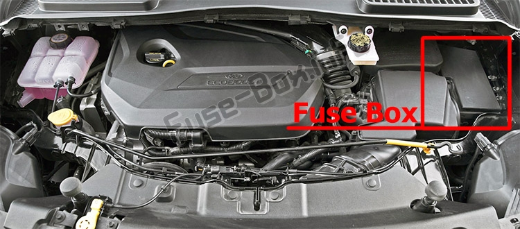 The location of the fuses in the engine compartment: Ford Escape (2013-2019)