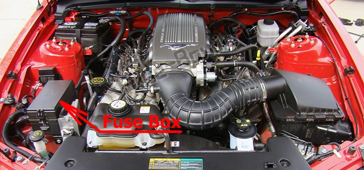 The location of the fuses in the engine compartment: Ford Mustang (2005-2009)