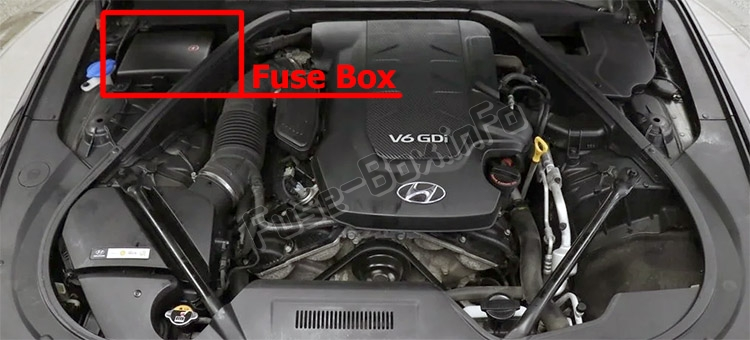 The location of the fuses in the engine compartment: Hyundai Genesis (DH; 2014-2019..)