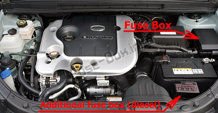 The location of the fuses in the engine compartment: KIA Carens (UN; 2007-2012)