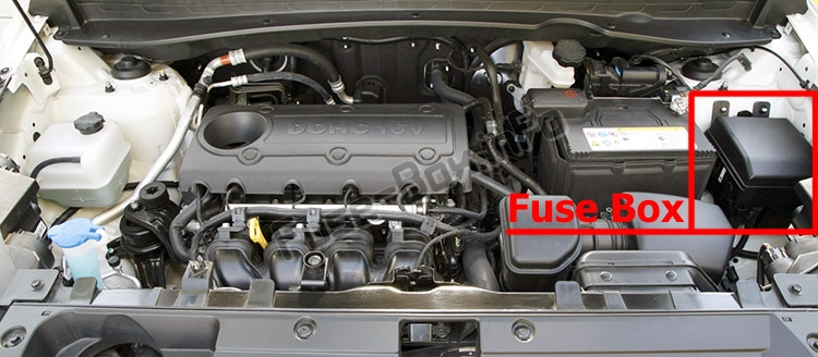 The location of the fuses in the engine compartment: KIA Sportage (SL; 2011-2015)