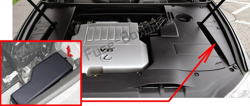 The location of the fuses in the engine compartment: Lexus ES350 (XV40 / GSV40; 2007-2012)