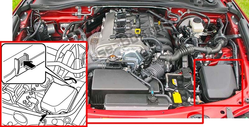 The location of the fuses in the engine compartment: Mazda MX-5 Miata (ND; 2016-2019..)