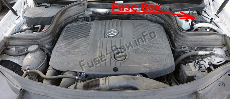 The location of the fuses in the engine compartment: Mercedes-Benz GLK-Class (X204; 2009-2015)
