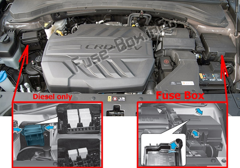 Manuals] 2005 Hyundai Santa Fe Engine Diagram FULL Version HD Quality Engine  Diagram - TEBO.XTREMEHUB.IT | 2005 Hyundai Santa Fe Engine Diagram |  | Media Library Books and Ebook Manual Reference - XTREMEHUB.IT
