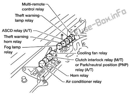 Nissan Xterra Fuse Box Diagram Wiring Diagram Local A Local A Maceratadoc It