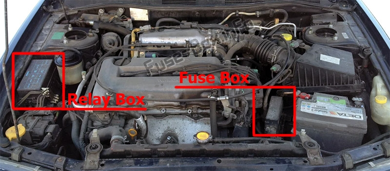 The location of the fuses in the engine compartment: Infiniti G20 (1998-2002)