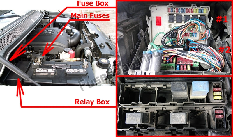 The location of the fuses in the engine compartment: Infiniti QX56 (2004-2010)