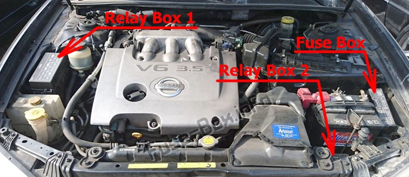 The location of the fuses in the engine compartment: Nissan Maxima (1999-2003)