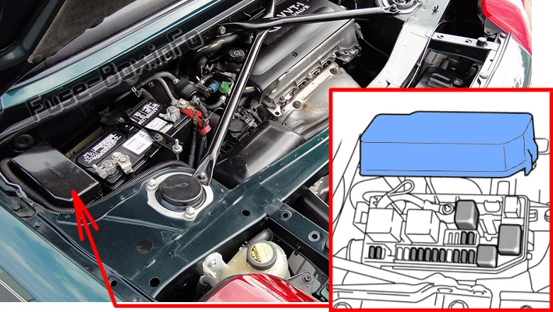 The location of the fuses in the engine compartment: Toyota MR2 Spyder (1999-2007)